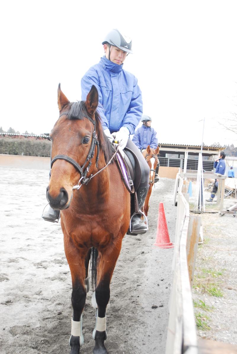 秘)もう一つの競馬学校ブログ ~ジョッキーになるには~